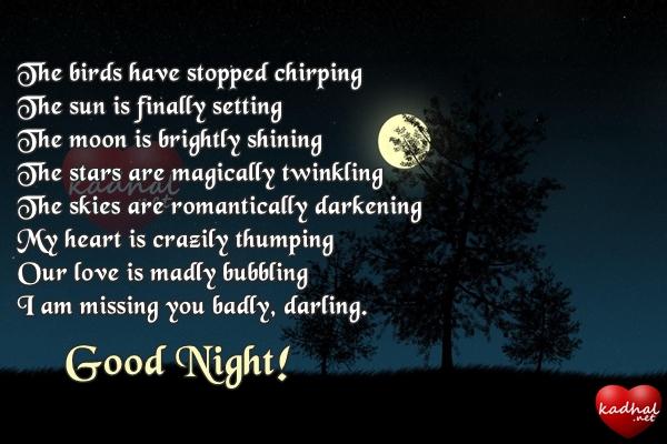 Good Night Poem for Boyfriend