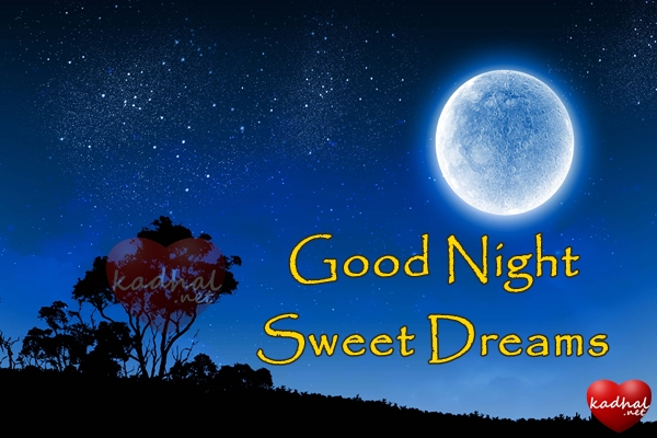 Good Night Wishes for Her