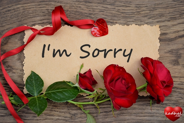 Sorry Images for Him